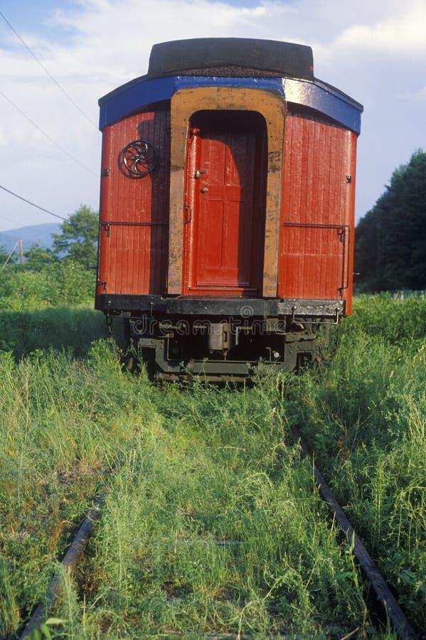在轨道的被放弃的客车长满与杂草和草,芒特普莱森特,纽约 免版税库存照片