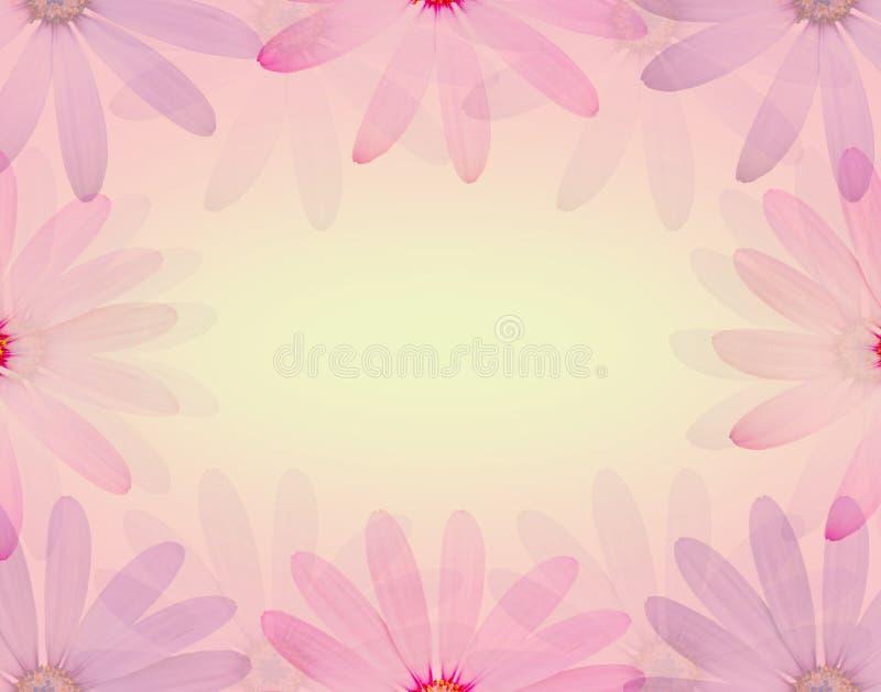 在软的甜颜色的五颜六色的雏菊花和迷离称呼纹理背景 库存例证