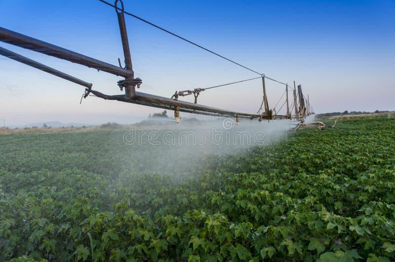 在轴上旋转的灌溉系统 免版税图库摄影