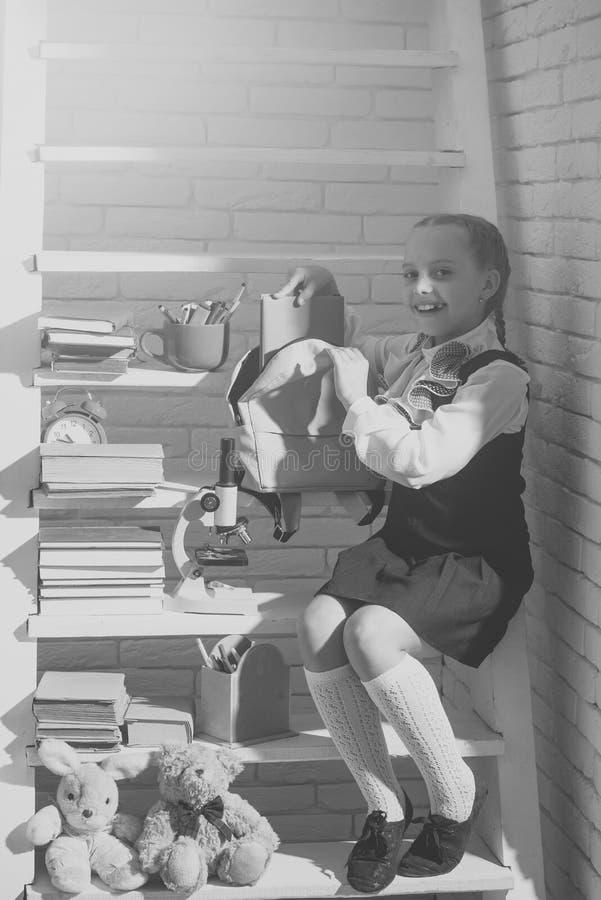 在轻的砖背景的书房哄骗 免版税图库摄影