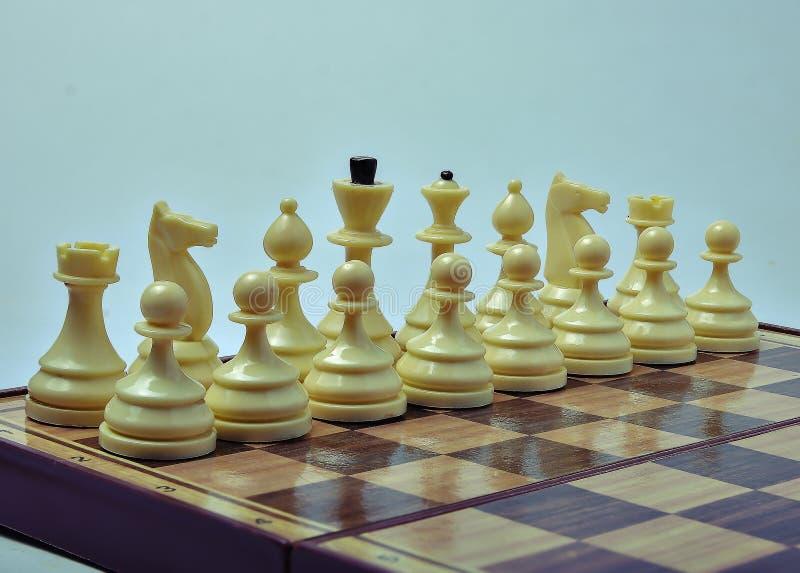 在轻的背景的白色棋子 免版税库存照片