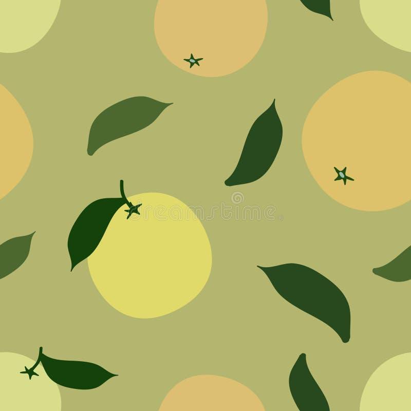 在轻的背景的葡萄柚 向量例证