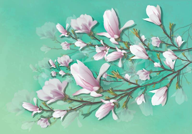 在轻的背景隔绝的现实木兰花 木兰分支是春天,夏天,女性魅力,阴物的标志 库存例证