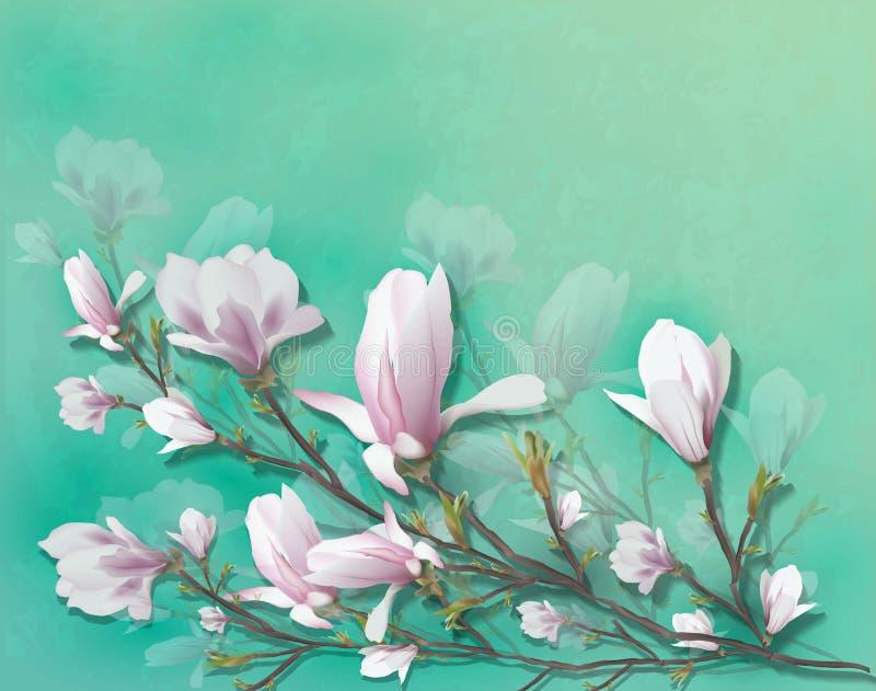 在轻的背景隔绝的现实木兰花 木兰分支是春天,夏天,女性魅力,阴物的标志 皇族释放例证