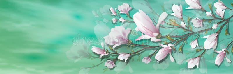 在轻的背景隔绝的现实木兰花 木兰分支是春天,夏天,女性魅力,阴物的标志 向量例证