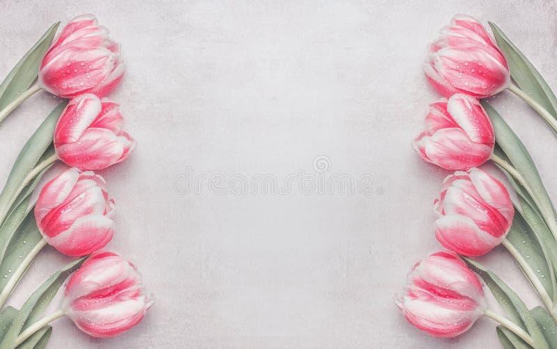 在轻的背景,顶视图的可爱的粉红彩笔郁金香框架 布局春天假日 库存图片