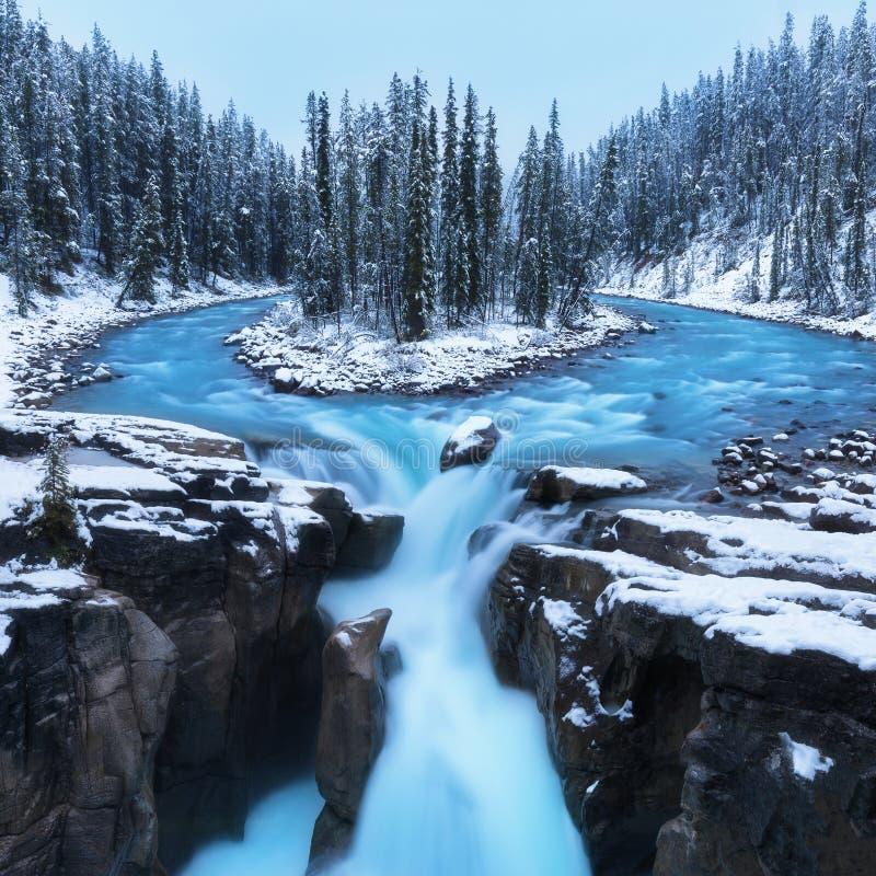 在辛华达瀑布的冷的风景在有雪的在美妙的风景的加拿大人罗基斯和冷杉木和冰和蓝色河 库存照片