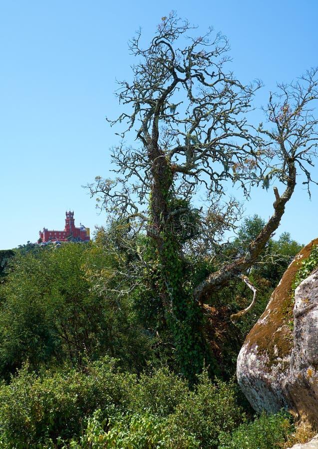 在辛特拉山上面的贝纳宫殿如被看见从摩尔人城堡 辛特拉 葡萄牙 免版税图库摄影