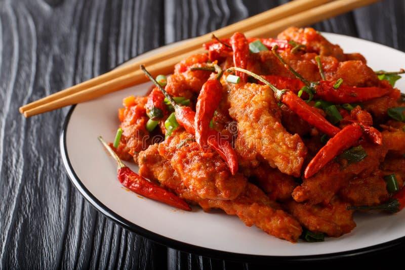 在辣调味汁的混乱油煎的szechuan鸡与在板材的大蒜、葱和辣椒特写镜头 ?? 库存图片