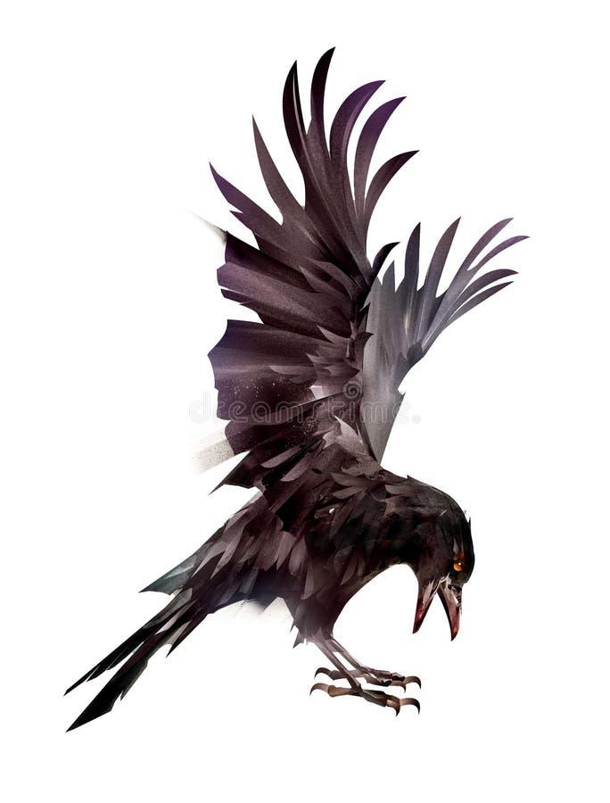 在边的被绘的鸟掠夺在白色背景 库存图片