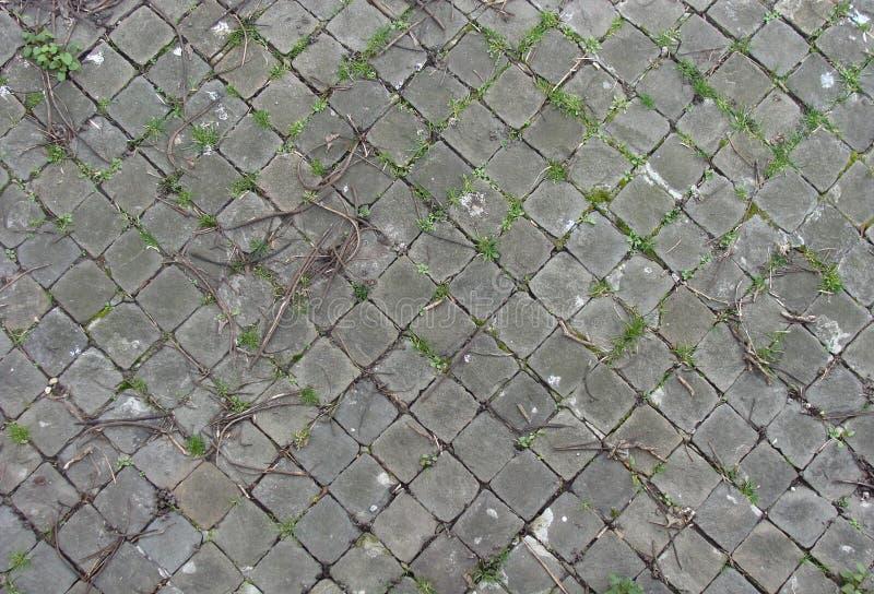 在边路正方形瓦片附近的港口 库存照片