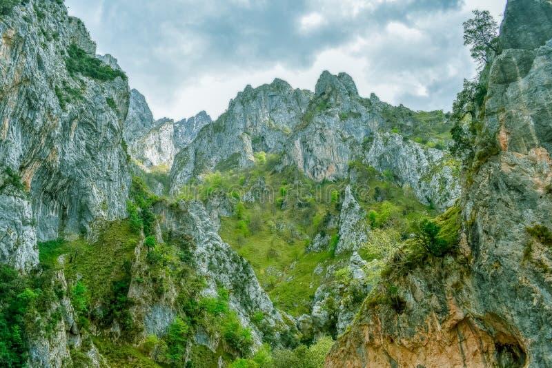 在迁徙路线,阿斯图里亚斯的关心的绿色山风景 免版税库存照片