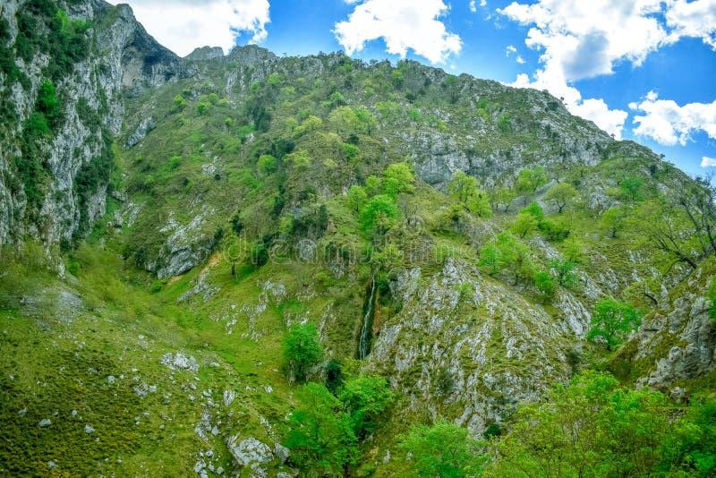 在迁徙路线,阿斯图里亚斯的关心的绿色山风景 库存图片