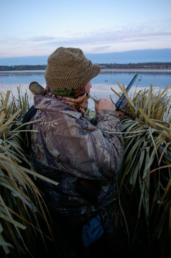 在运作电话的窗帘的鸭子猎人 免版税库存图片