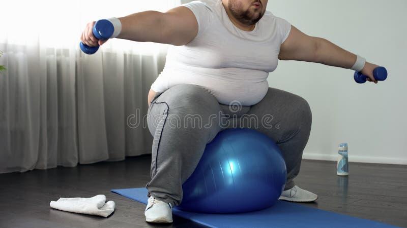 在运动服举的哑铃坐健身球,活动的肥头大耳的男性 免版税库存照片