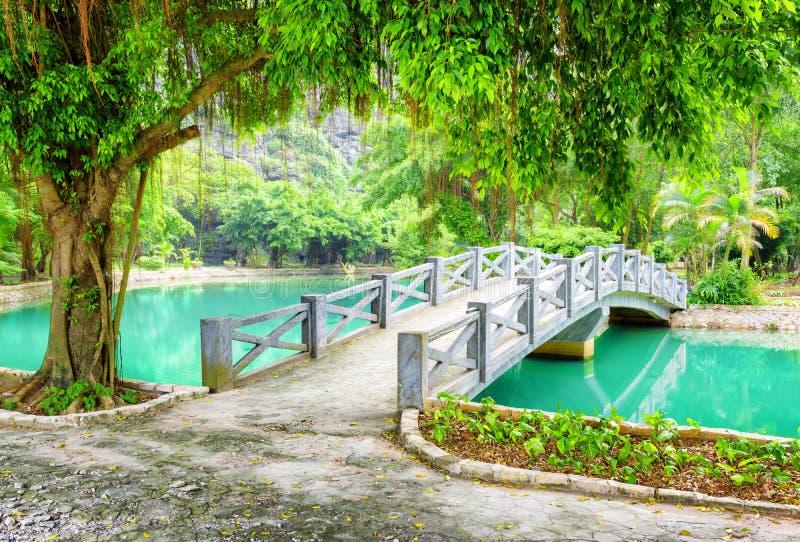 在运河的桥梁用天蓝色的水在热带庭院,越南里 免版税库存照片