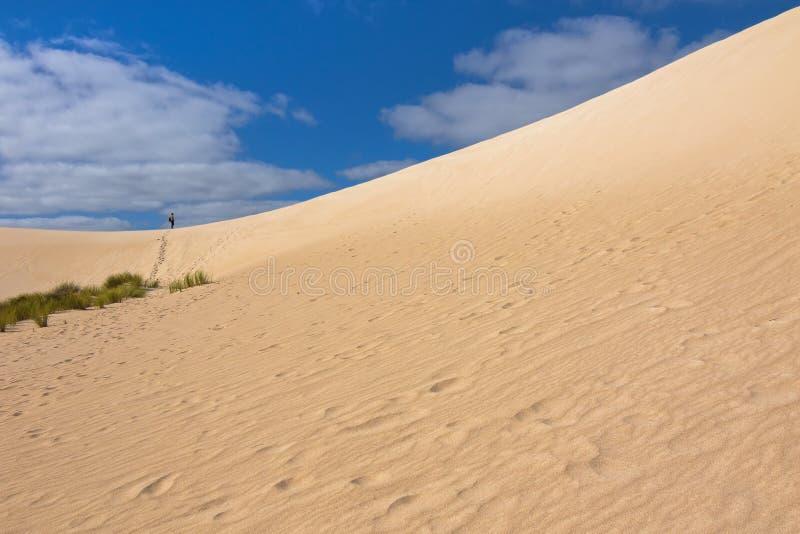 从在远处的高沙子小山土坎在一点撒哈拉大沙漠白色沙丘 免版税图库摄影