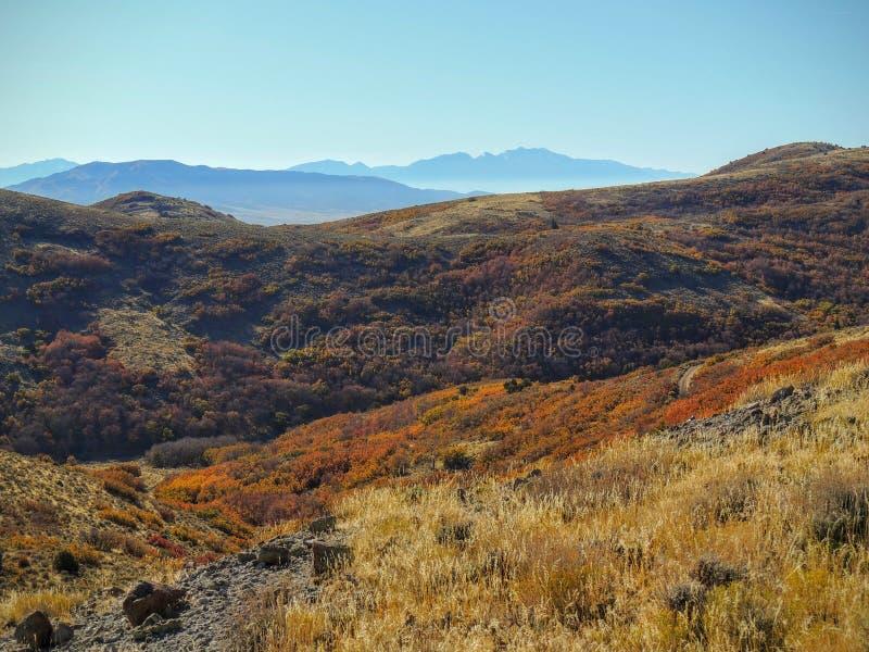 在远足罗斯峡谷的秋天秋天的盐湖谷和Wasatch前面沙漠的看法山染黄叉子、大岩石和Waterf 库存照片