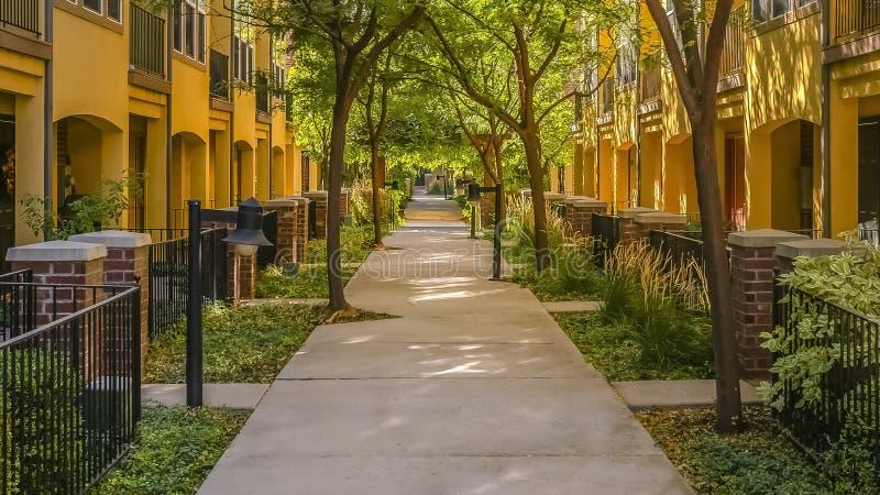 在连栋房屋和树中间的路 免版税库存照片