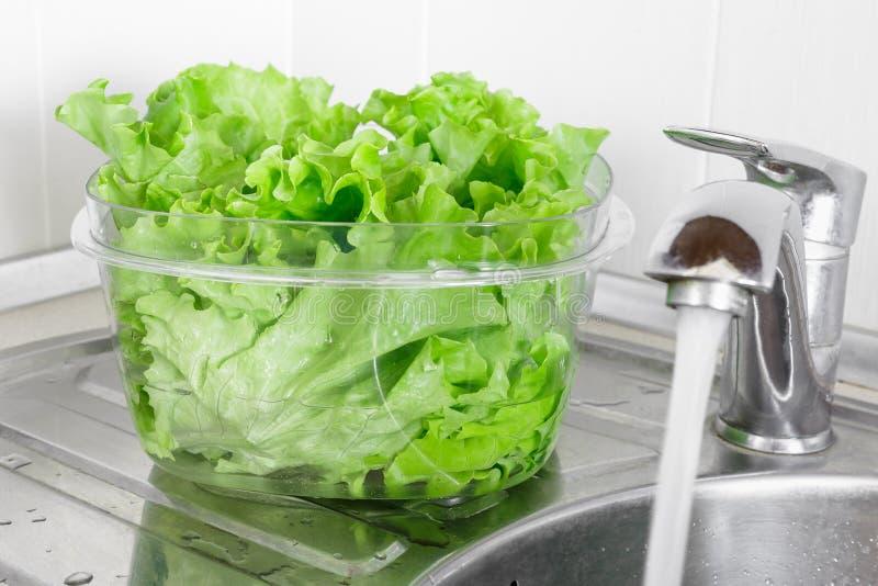 在透明塑料碗浸泡的新鲜的莴苣叶子 库存照片