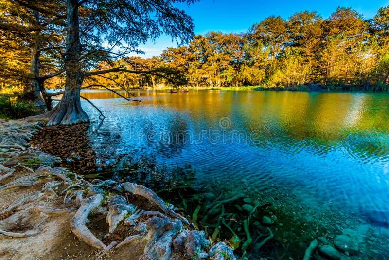 在透明的Frio河的秋叶在得克萨斯 免版税库存照片