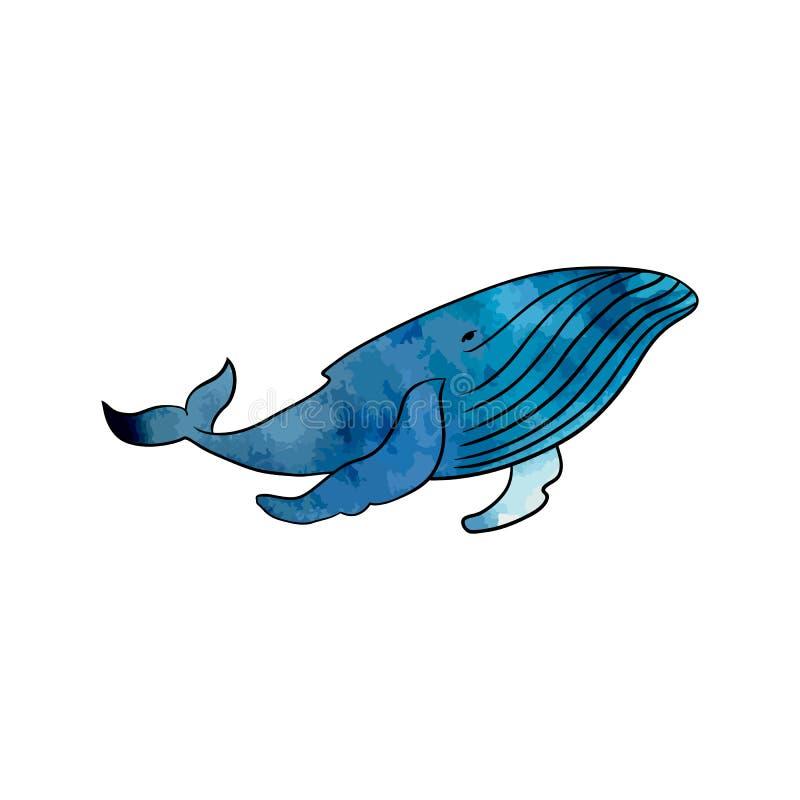 在透明背景的五颜六色的鲸鱼 皇族释放例证