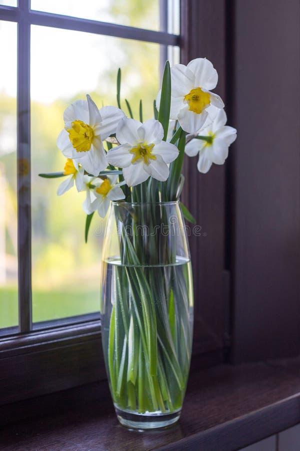 在透明花瓶的黄水仙在窗口的基石 免版税图库摄影