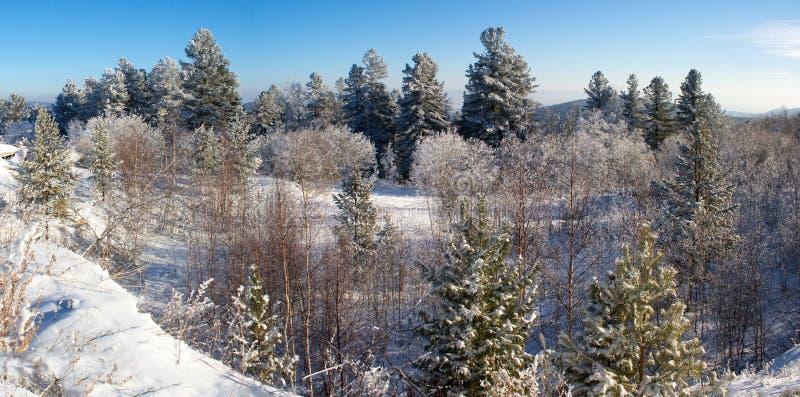 在通行证的冬天 免版税库存图片