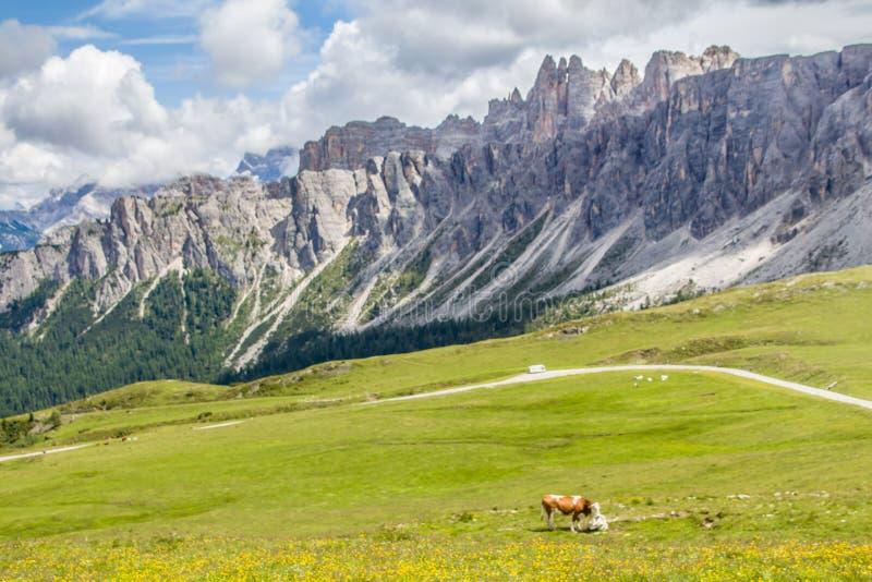 在通行证Giau的壮观的全景山风景 免版税库存图片