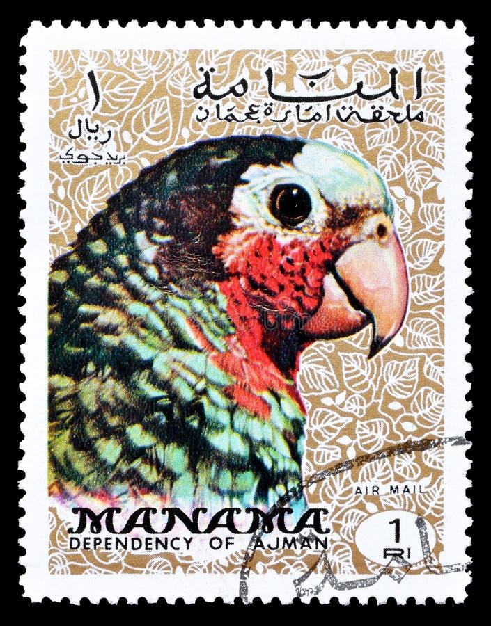 在邮票的鸟 免版税库存图片