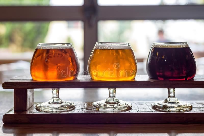 在郁金香玻璃的啤酒飞行在microbrewery 免版税库存图片
