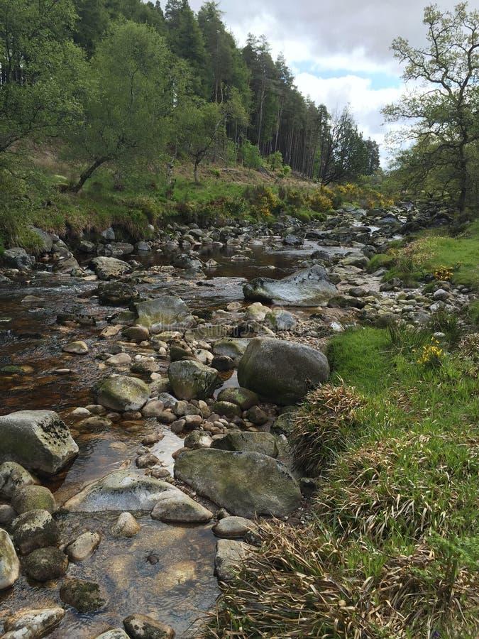 在都伯林,爱尔兰之外的胡说的溪 免版税库存照片