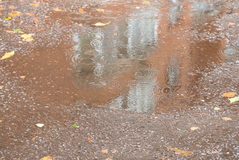 在都市房子附近搅浊湿柏油路在雨中 图库摄影