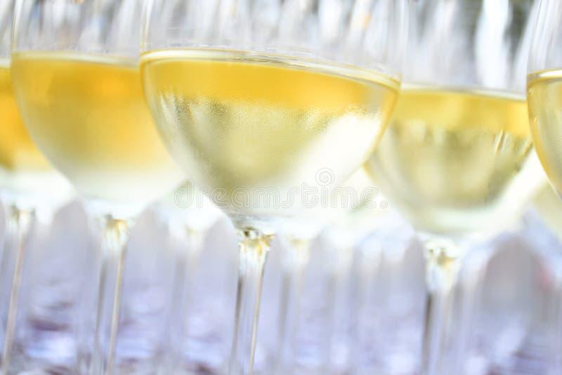 在酒杯的白葡萄酒 免版税库存图片