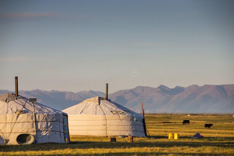 在酷寒北风蒙古风景的家庭热尔省  库存图片