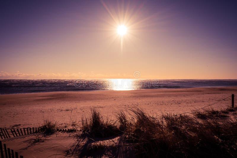 在酷寒海滩的太阳 库存照片