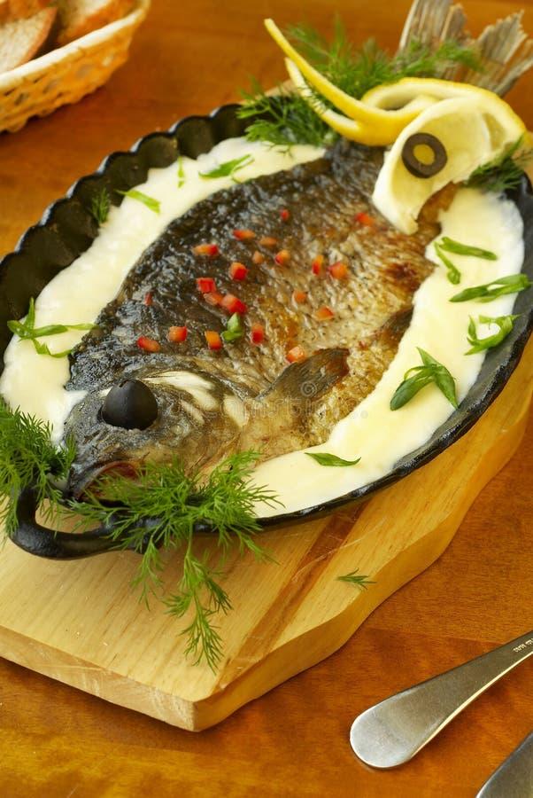 在酸性稀奶油调味汁的被烘烤的鲤鱼 免版税库存照片