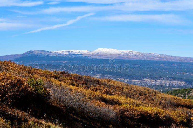 在里奇韦,科罗拉多,美国附近的秋天颜色 免版税库存照片