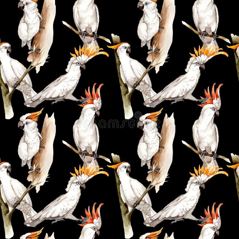 在野生生物的天空鸟白色金刚鹦鹉样式由水彩样式 皇族释放例证