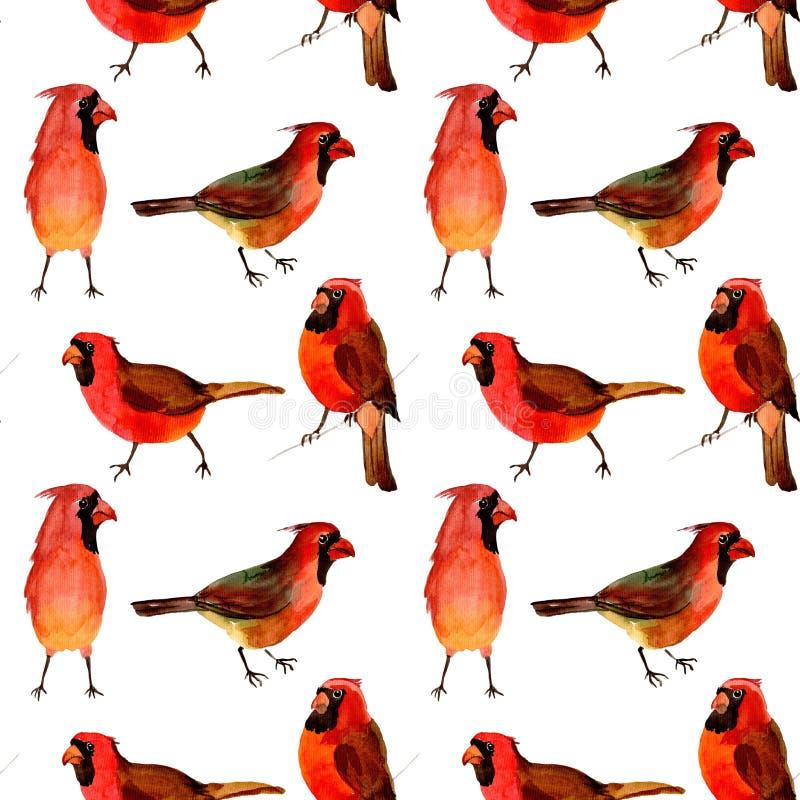 在野生生物的天空鸟红色主要样式由水彩样式 向量例证
