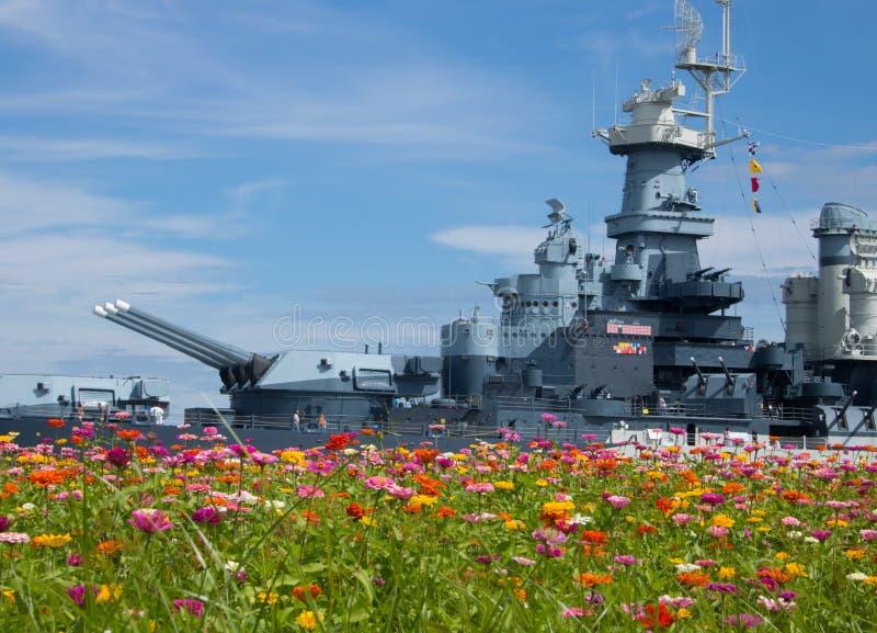 在野花的战争 库存图片