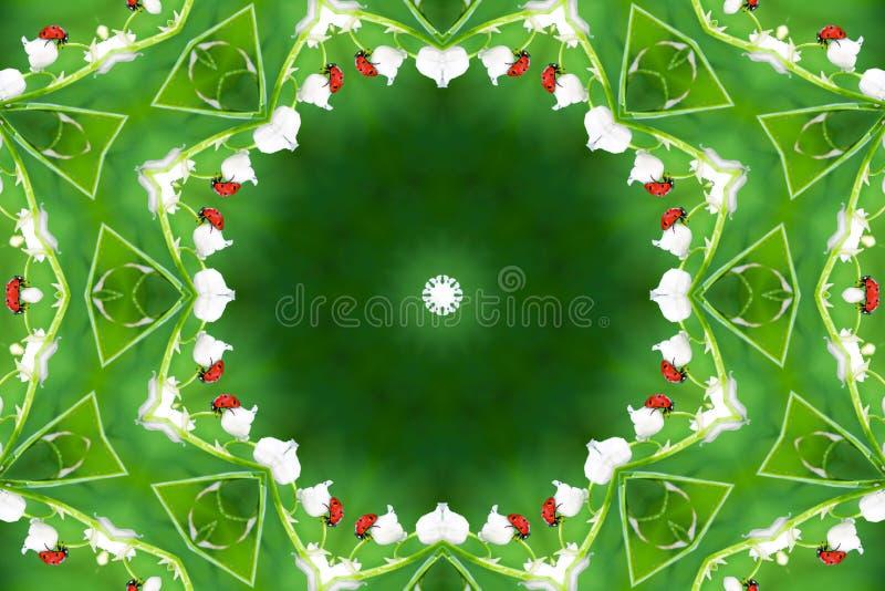 在野花铃兰的瓢虫 库存图片