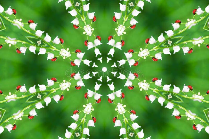 在野花铃兰的瓢虫 库存照片