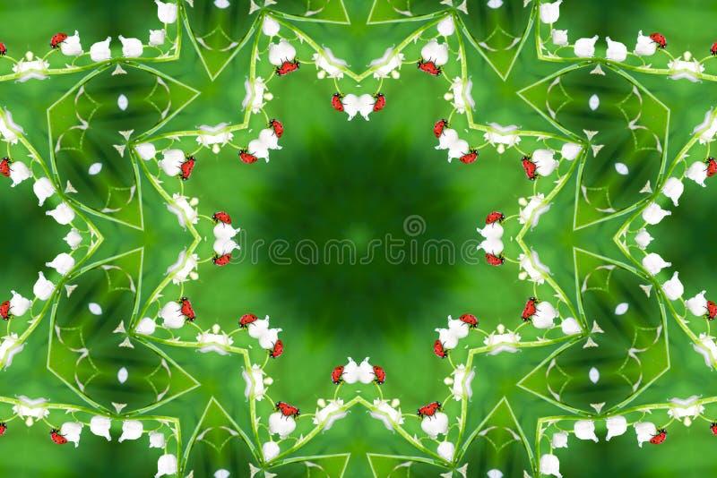 在野花铃兰的瓢虫 免版税库存图片