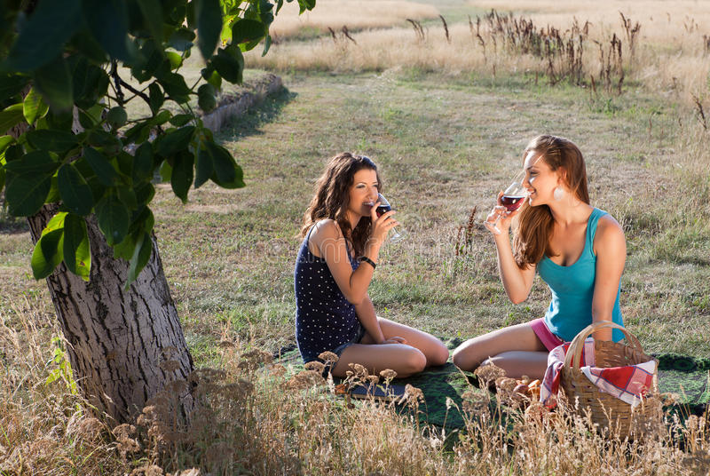 在野餐的品尝酒 免版税库存图片