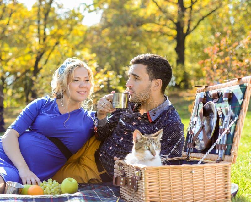 在野餐的怀孕的愉快和微笑的夫妇与猫 库存图片