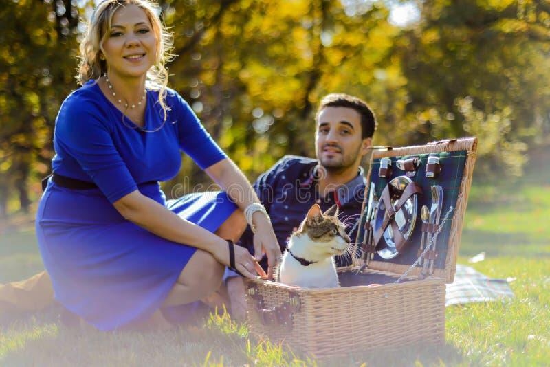 在野餐的怀孕的愉快和微笑的夫妇与猫 图库摄影