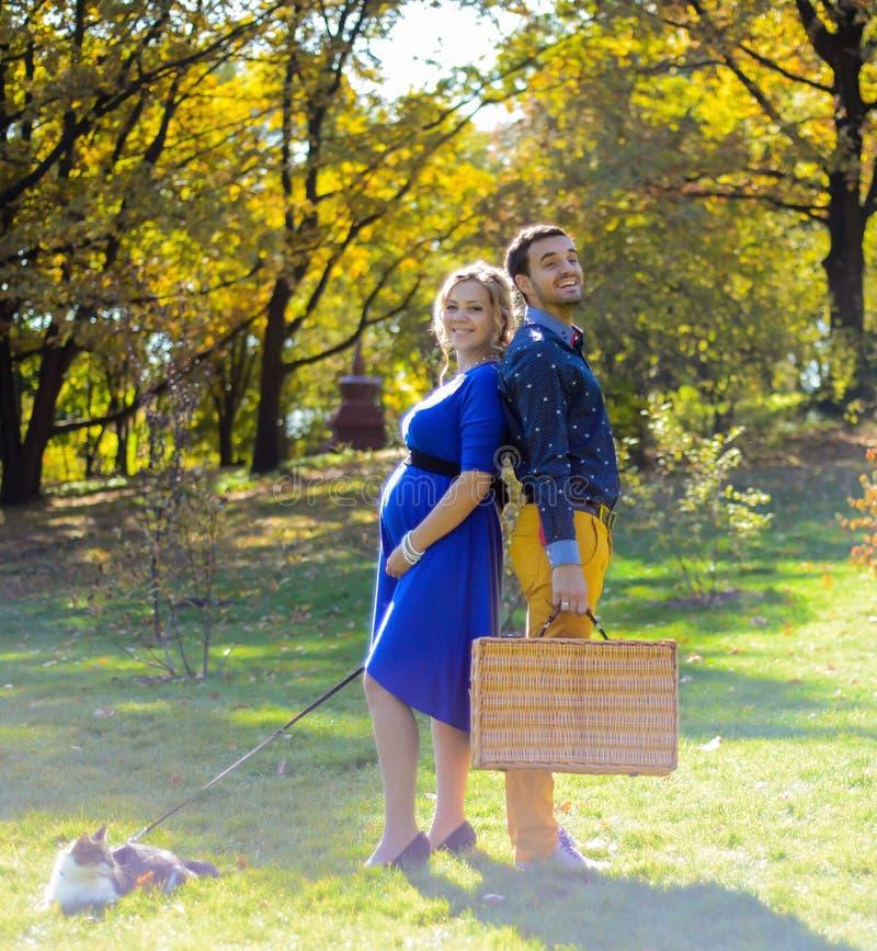 在野餐的怀孕的愉快和微笑的夫妇与猫 免版税图库摄影