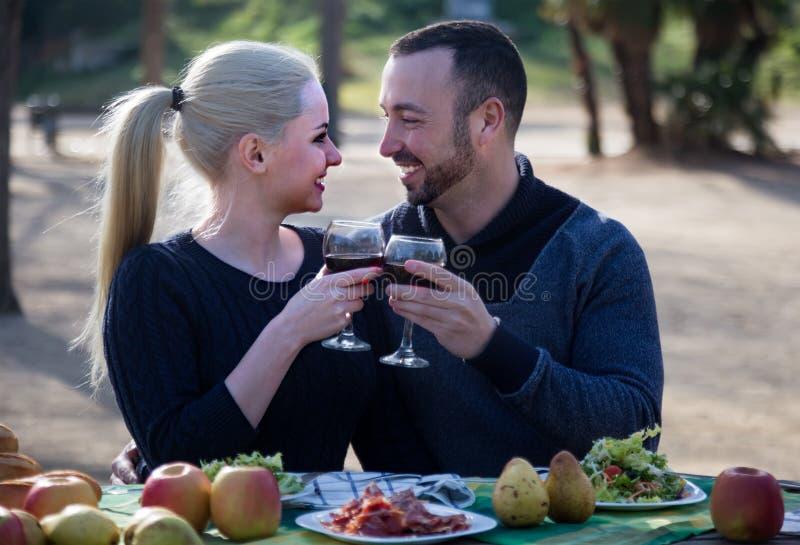 在野餐的爱恋的年轻夫妇 免版税库存图片