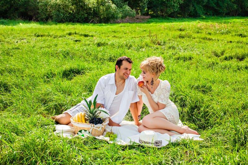 在野餐的年轻夫妇 库存照片